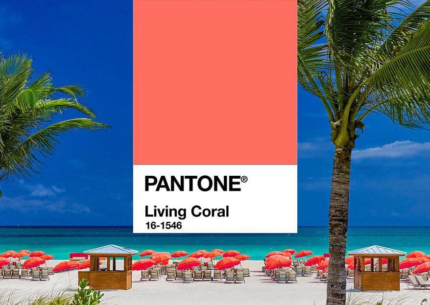 Veja como usar a cor Pantone 2019 em diversos aspectos do seu casamento. Inove e tenha um grande dia super trendy!